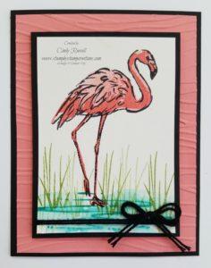 Fabulous Flamingo.0617